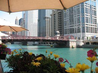 Summer chicago view
